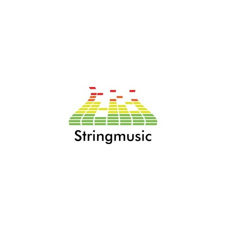 Stringmusic.com is available for sale!