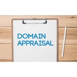 Domain Appraisals (1 Domain)